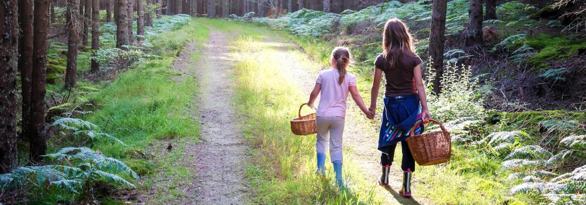To barn på sopptur i skogen.